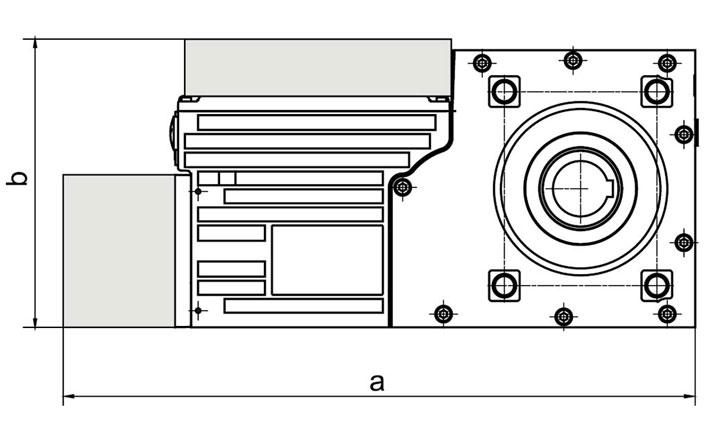 Slip-on geared motor Compacta AG160 Options